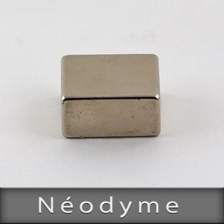 Néodyme Format L22mm X H18mm