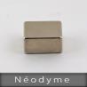 NEODYME  22mm x 11mm  Hauteur 18mm