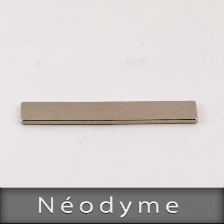 Néodyme Format L50mm X H1,5mm