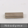 NEODYME  25mm x 10mm  Hauteur3mm